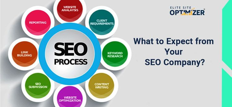 What to Expect from Your SEO Company?