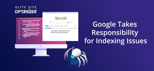 google takes responsibility for indexing issues